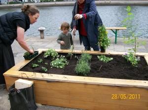 atelier-110628-bloembak-planten