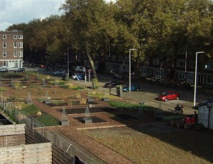 tuin ad dijk-1410-overzicht uitsnede